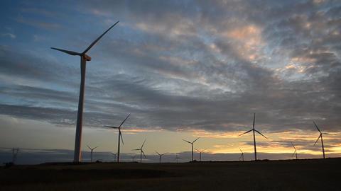 Wind turbines at sunset Footage