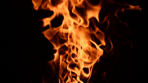 Fire burning, close up view. Low key effect. Loop Footage