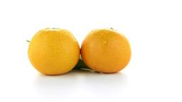Ripe Tangerine Or Mandarin stock footage