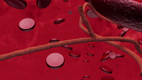 4K Microscopic Ebola Virus and Blood Cells Animation