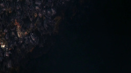 Bats In The Bat Cave Goa Lawah Bali Indonesia stock footage