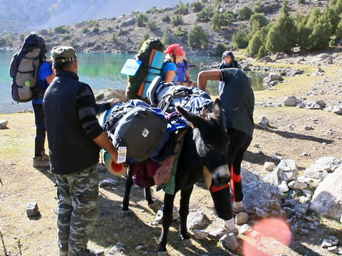 On a donkey loaded with backpacks. Tajikistan. 640 Footage