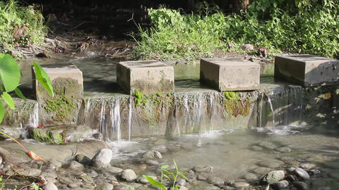 Flowing water, stones and grass on the river Footage