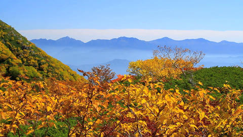 Autumn in the mountains ビデオ
