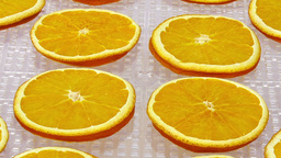 Time-lapse of drying orange 1b1 Live Action