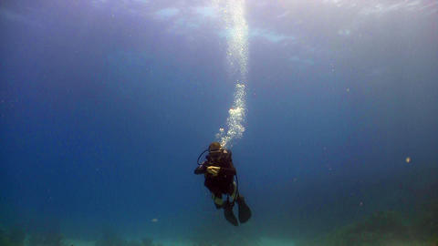 diver swims coral reefs Footage