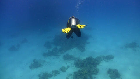 diver swims over coral reefs Stock Video Footage