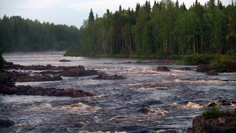 rough river flows through the forest Footage