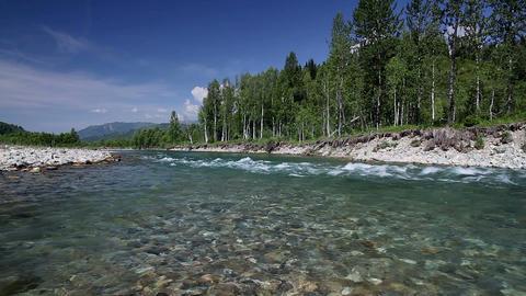Altai summer Stock Video Footage