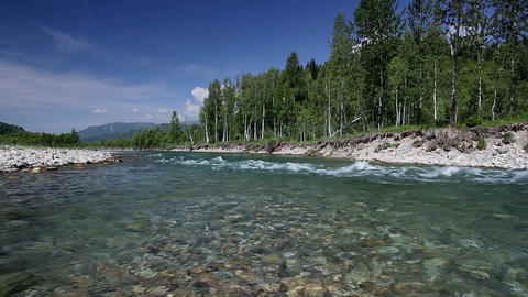 Altai summer Stock Video Footage