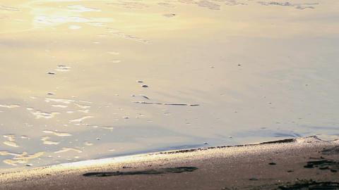 Human feet walking on water Stock Video Footage