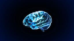 blue brain Stock Video Footage