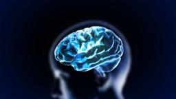 blue head brain Stock Video Footage