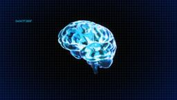 brain random code Stock Video Footage