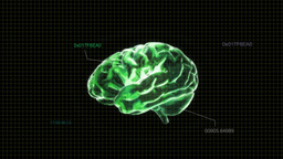 green brain with code Stock Video Footage