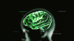 green head brain with code Stock Video Footage