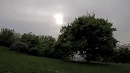 Mystic Scene 03 Footage