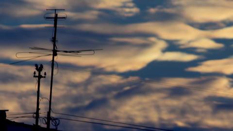 Antenna sunset blue Live Action