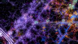 Virus Video Background 1433 stock footage