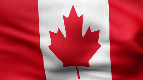 Flag of Canada 4 K Animation