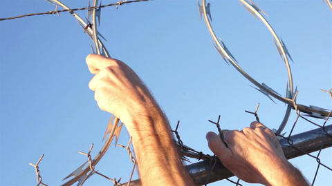 Razor Wire Fence Hands Grabbing Footage