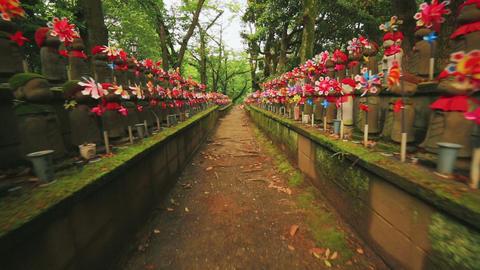 Hundreds of Japanese Buddhist statues Tokyo's Zojo Footage