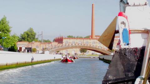 Aveiro Moliceiros boats Footage