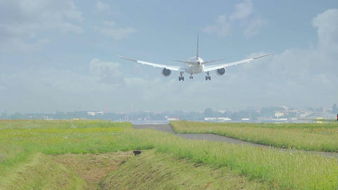 Large Commercial Plane Landing From Behind stock footage