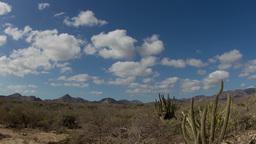 Baja Desert 4k 01 stock footage