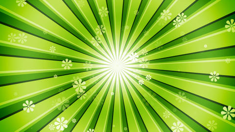 Green Sun Burst Flowers Animation