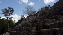 mayan ruis kalakmul mexico 4k Footage