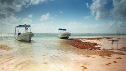 mexico mahahual boats beach paradise 4k Footage