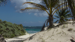 caribean paradise beach mexico tropical 4k Footage
