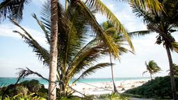 tulum paradise beach mexican caribbean coast Footage