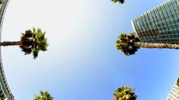 2012 October San Diego 8 Footage