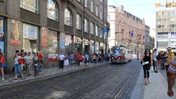 Trams on the street of Prague, Czech Republic Live Action