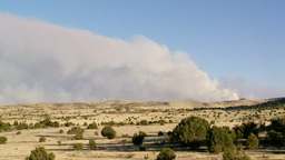 Forest Fire 1 2011 Footage
