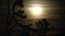 Joshua Tree Moon 4 2012 Footage