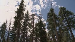 Landscape Timelapse 7 stock footage