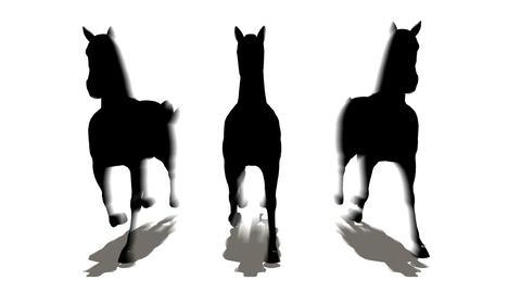 three horses Stock Video Footage