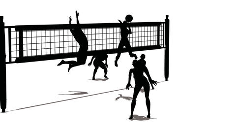 volleyball silhouette Stock Video Footage