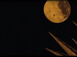 Moon Spikes Footage