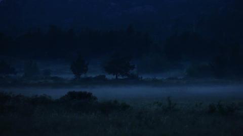 Night Fog stock footage