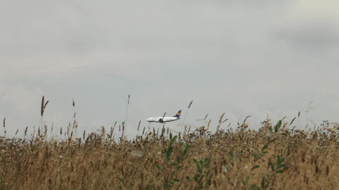 Airplane Landing In The Thick Grass stock footage