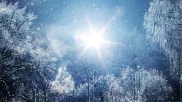 Winter Dream, Stock Animation