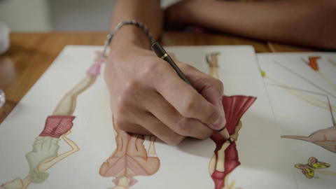 Young Women Working As Fashion Designers And Drawing dress Footage
