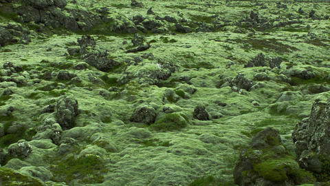 Interesting igneous rock formations in Iceland Footage