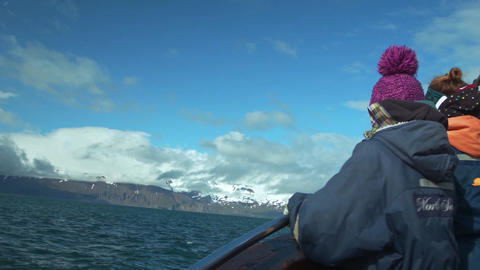 Participants Of A Whale-watching Tour stock footage