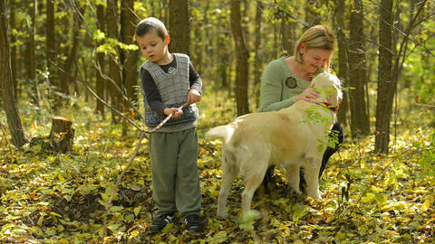Mother And Son In Forest stock footage