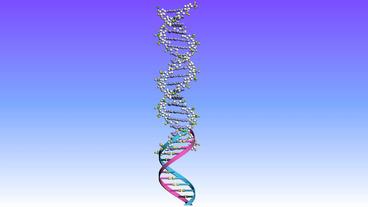 Rotation Of 3D DNA.medicine Biology Science Medical Helix Molecule Molecular stock footage